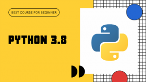 Python for Beginners in Hindi